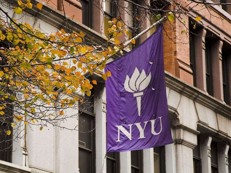 American Language Institute (New York University)